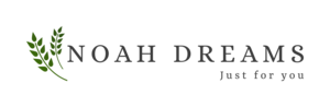 Logo Noah Dreams